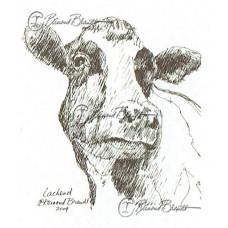 Lachende koe