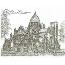 St.Bavo Basiliek